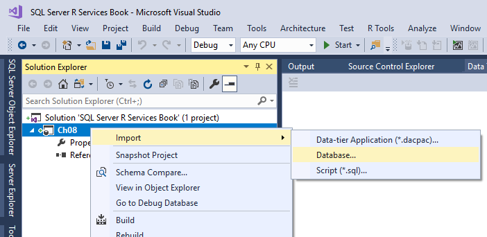 Importing an existing database into the project - SQL Server