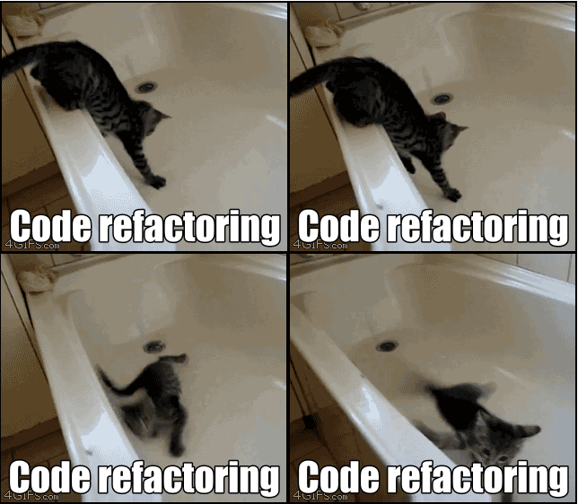 An adventurous cat, trying to refactor its way out of a slippery bathtub