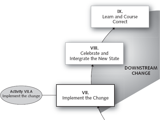 PHASE VII: Implement the Change