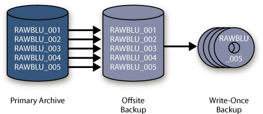 The bucket system enables easy confirmation that you have backed up your image files, even if you are using different-sized storage devices—or different media entirely—for your backups. From left to right, these images represent the primary drive with the master original files, the hard drive backups of the originals (perhaps on smaller disks), and the second backup copies on optical media.