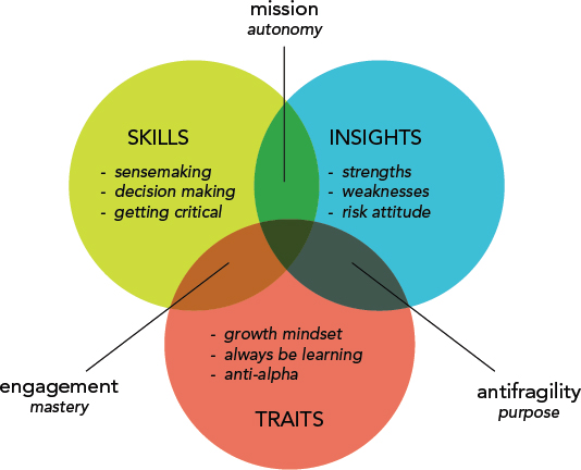 Venn diagram shows three circles representing skills, insights and traits for Alpine Style Model. The overlapping areas are labeled as mission autonomy, antifragility purpose and engagement mastery.