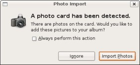 Figure 21-1: The Photo Import dialog.