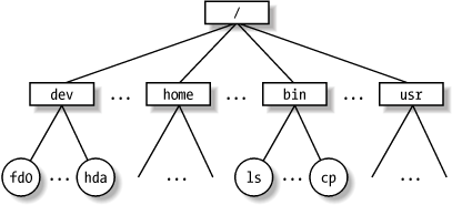 An example of a directory tree