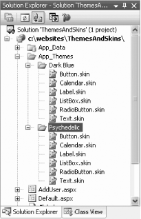 Themes and skins in your project