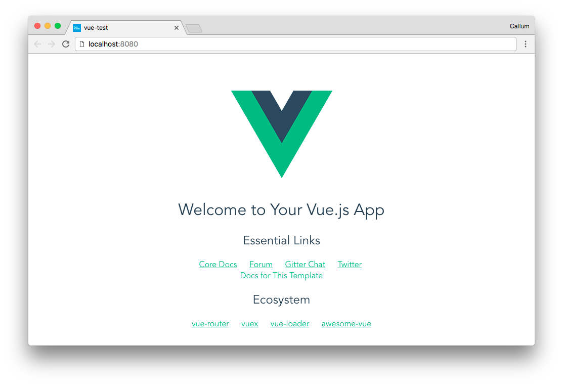 The basic app set up by vue-cli