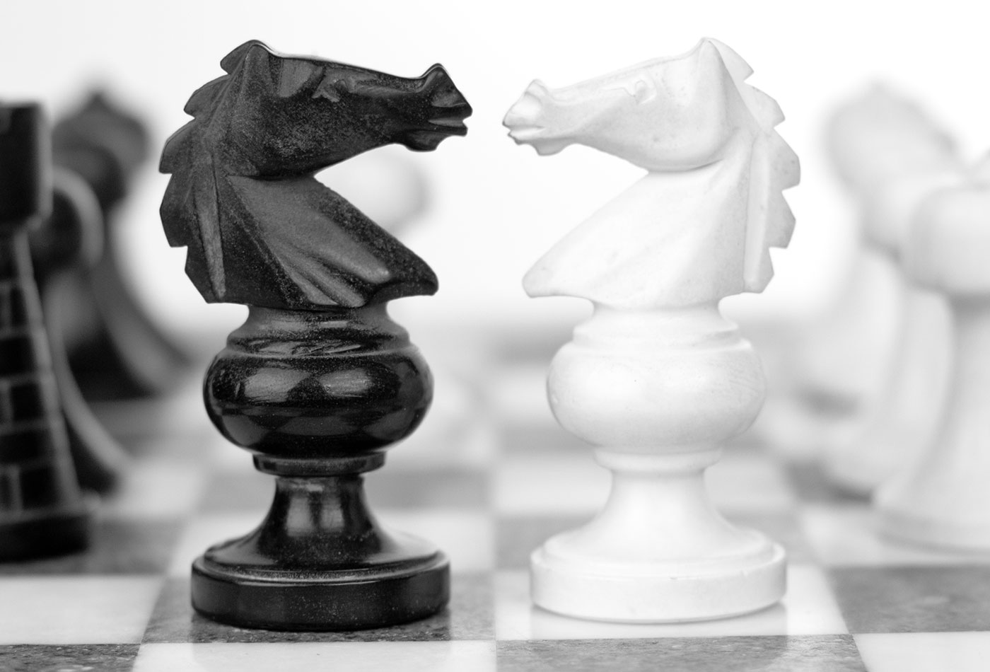 Chess knights in battle
