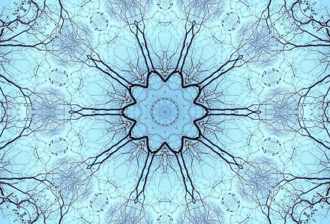Nature-kaleidoscope.