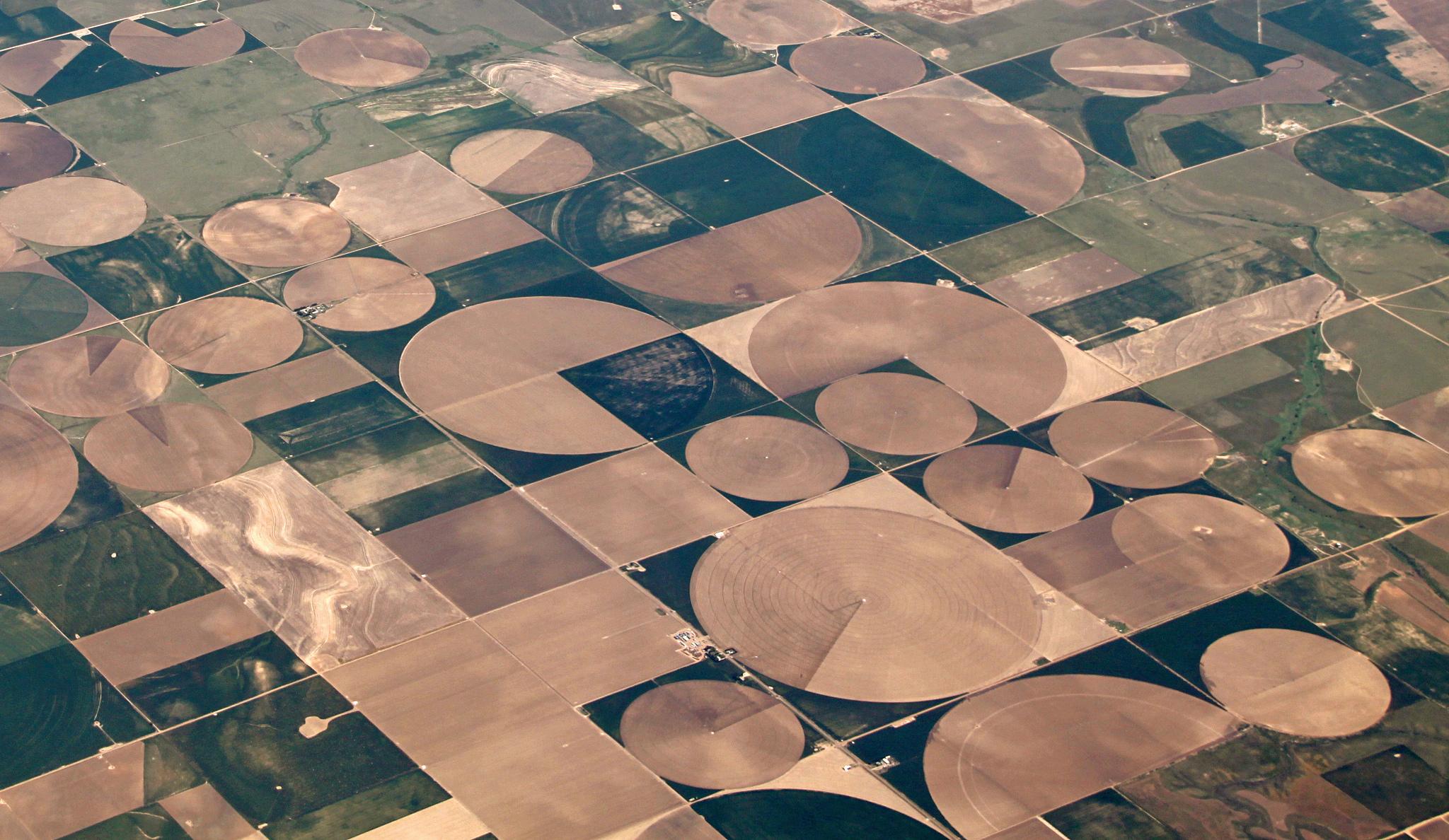 A cluster of center pivot irrigation fields.