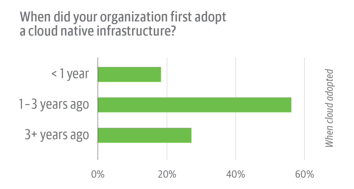 Cloud native adoption history among survey respondents
