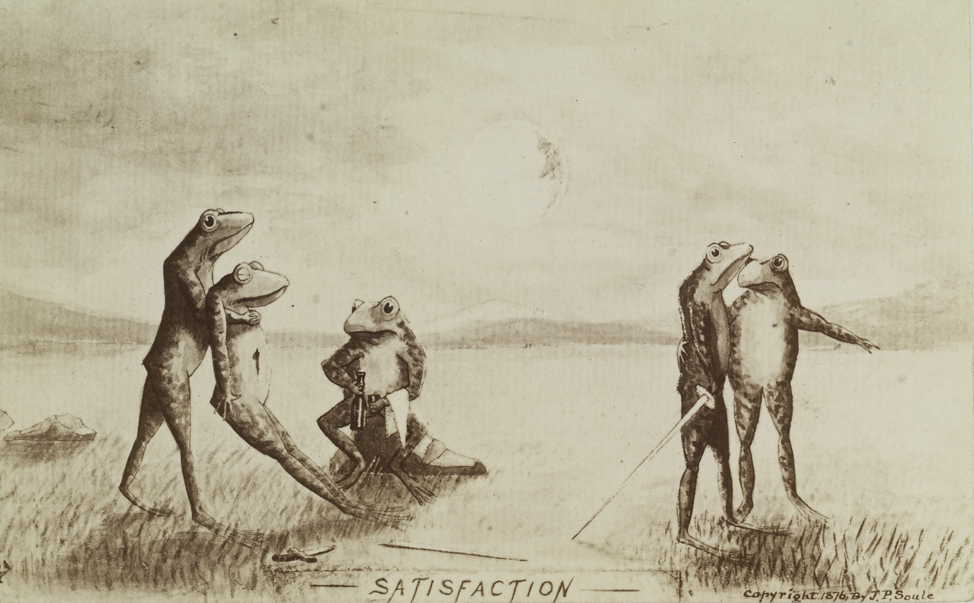 Frogs conducting a duel