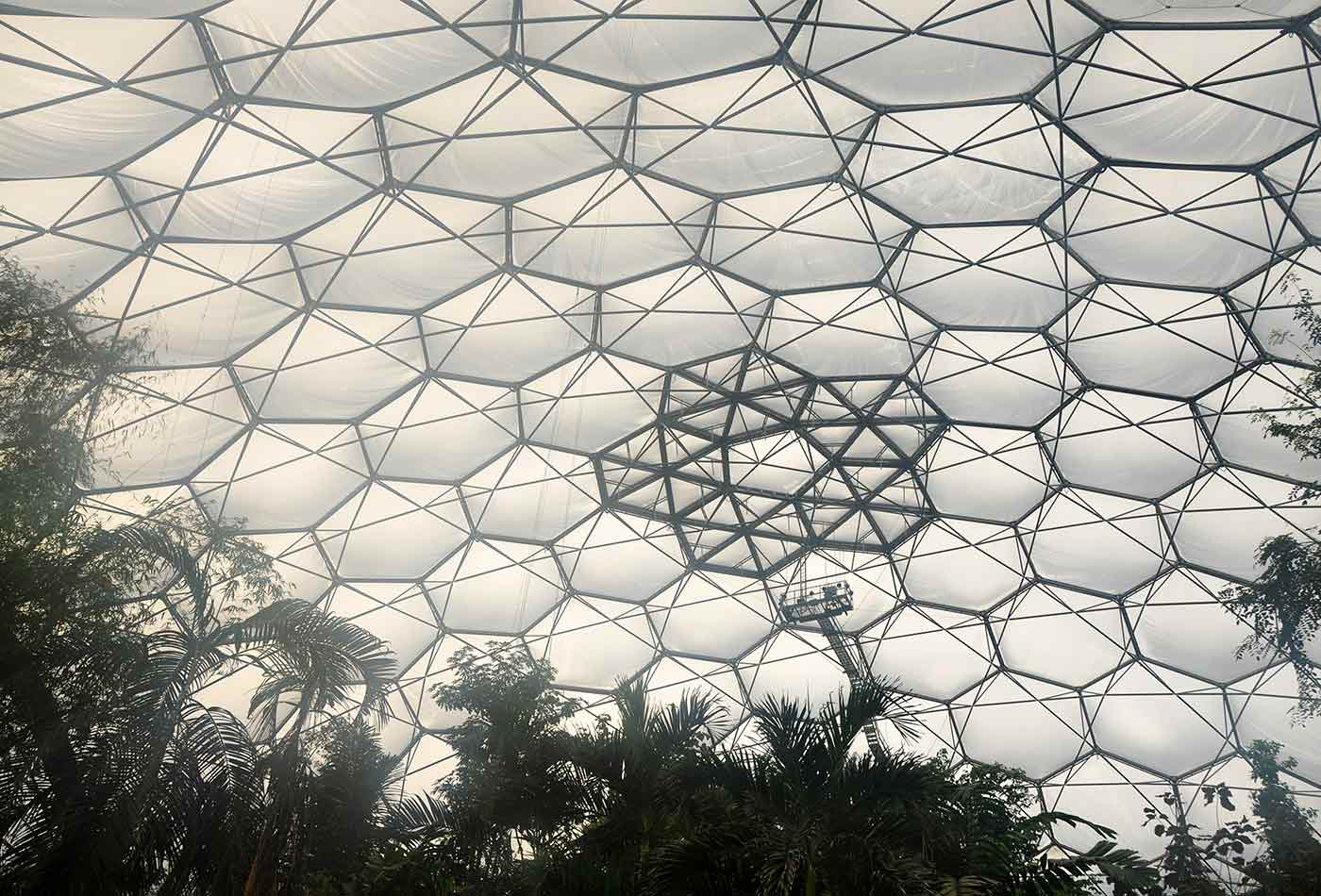 The interior of the tropical biome at the Eden Project