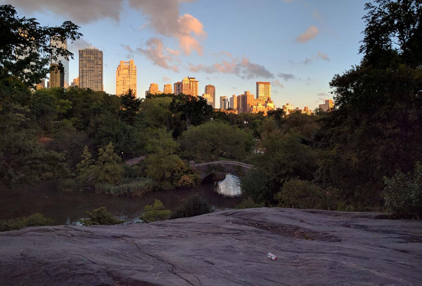 Sunrise over central park, with abandoned water bottle.