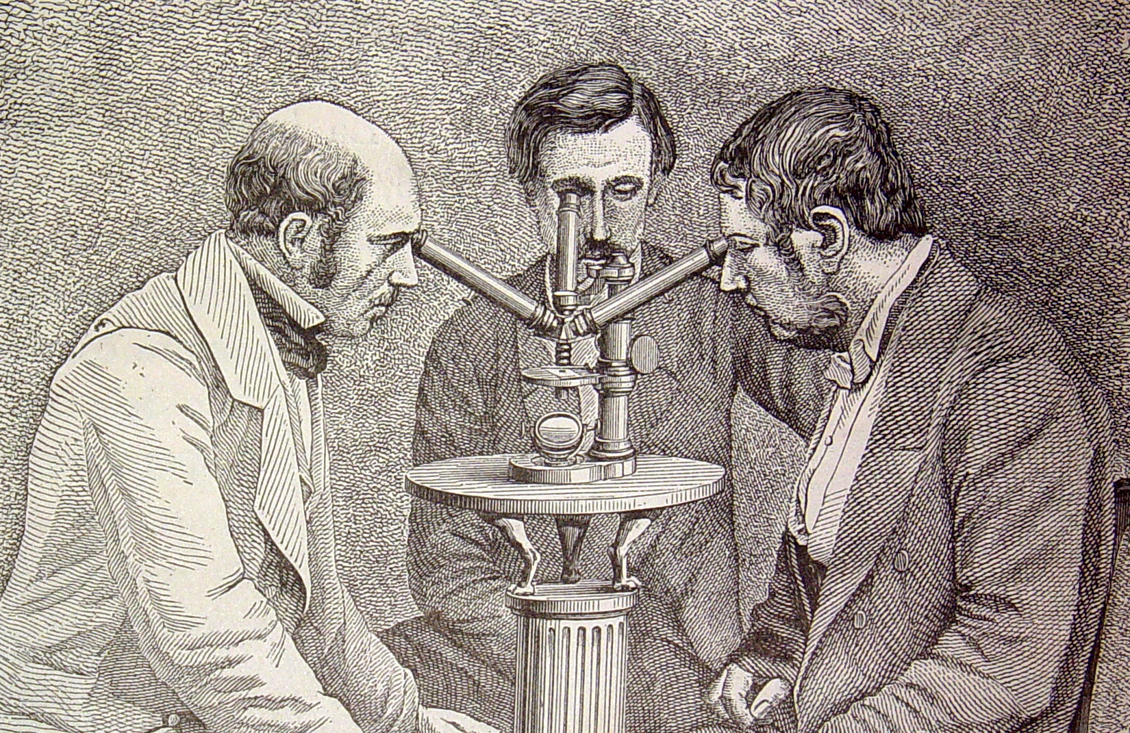 Microscopio de tres cuerpos