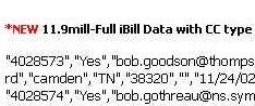 ibill-sample-sm.jpg